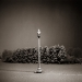 lamp_post_january_snow_1998