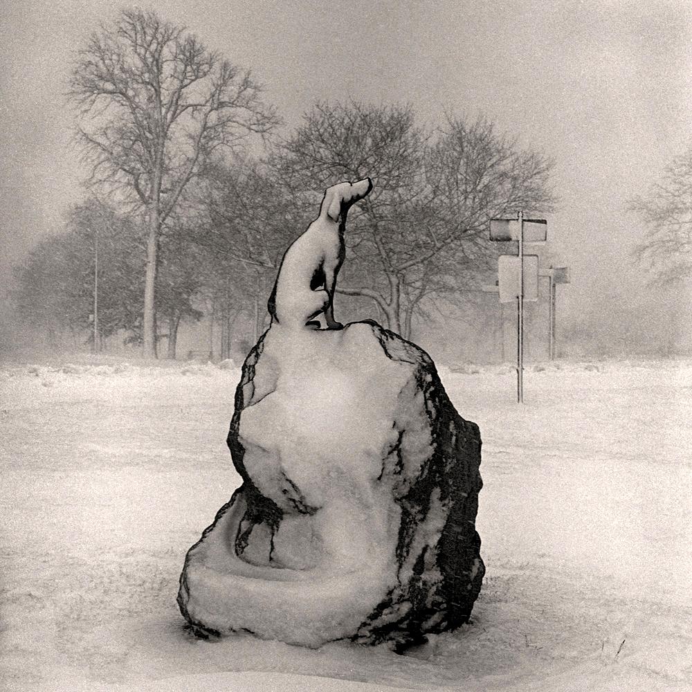 belle_isle_snow_dog_1996