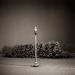 lamp_post_january_snow_1998